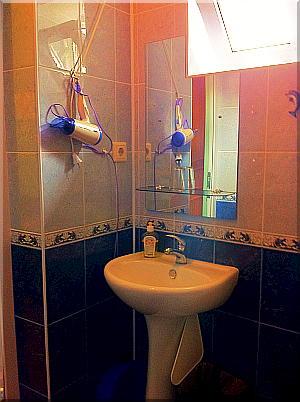 Сан.узел с                               душем в одноместном номере. Всё для вас!